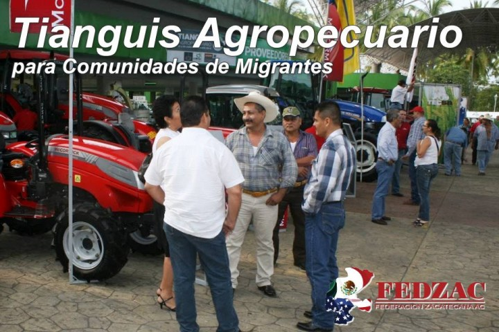 tianguis agropecuario